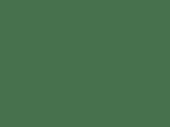 Ford Ranger 3L EGR Delete